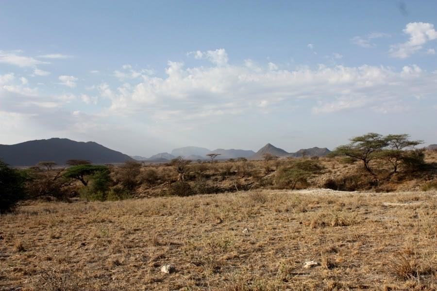 Samburu National Reserve 3