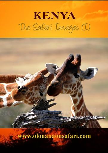 Kenya Photography Magazine