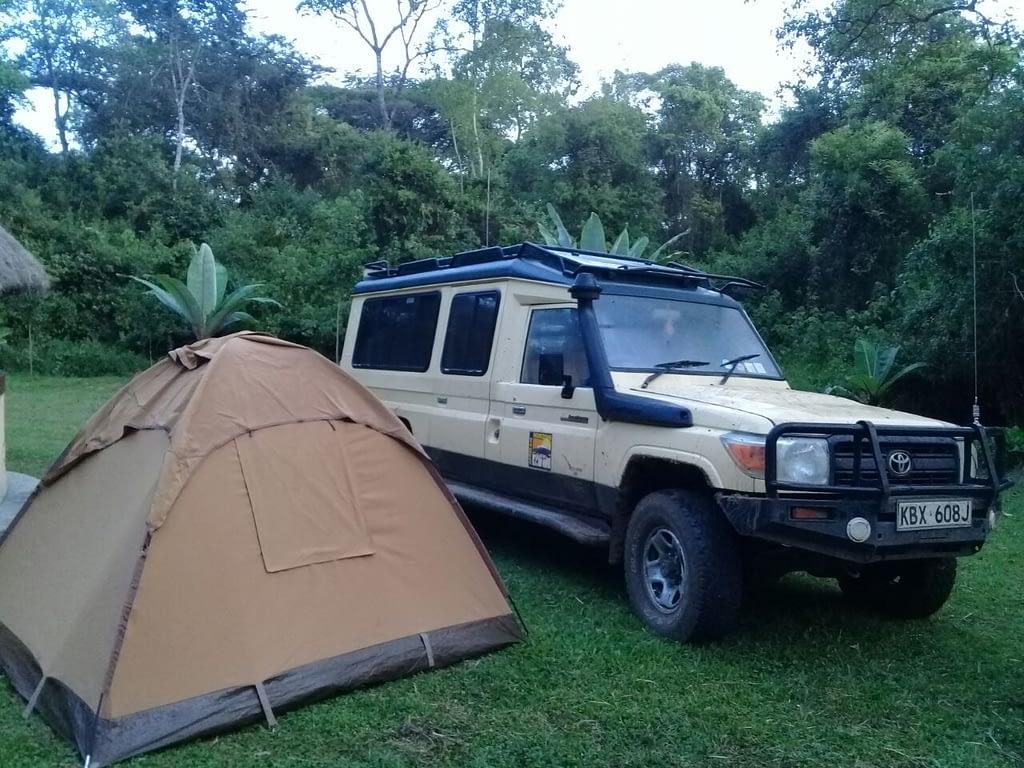 Kenya Forest Parks Safari 19