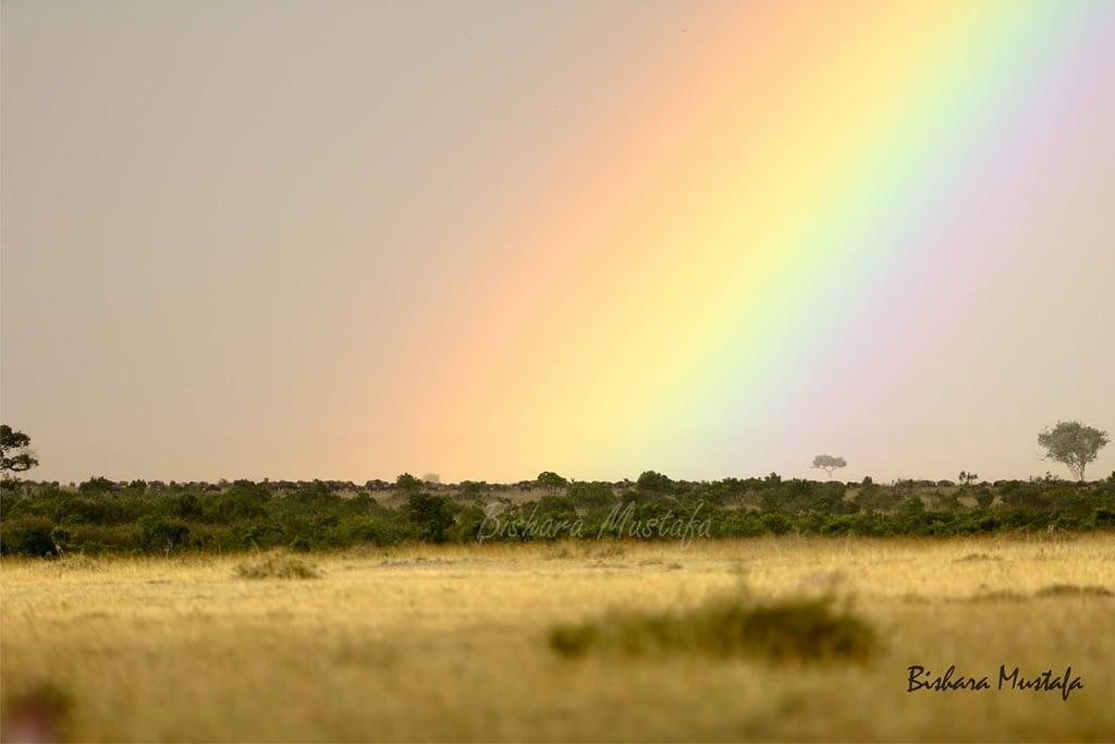 Masai Mara Skyscape - Bishara Mustafa 2