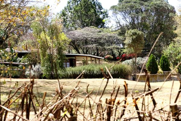 Off the beaten road, Kenya Safari 6