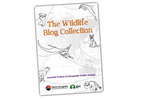 Wildlife Blog Collection