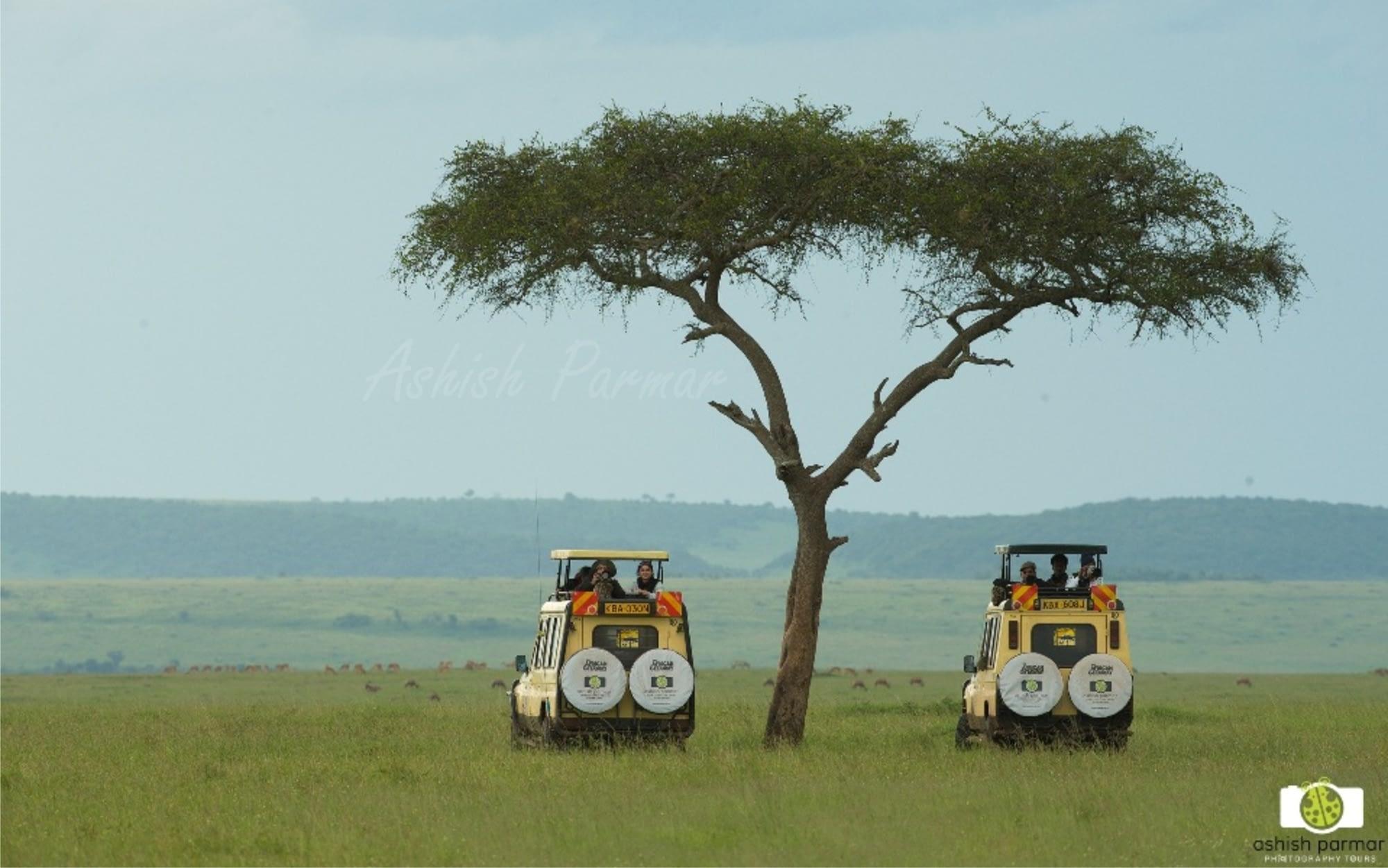 Masai Mara Photography Safari 2